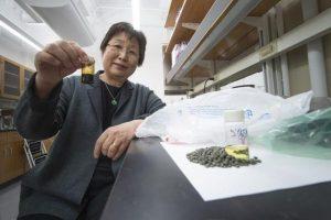 Trasformare tonnellate di rifiuti di plastica in benzina e diesel poco inquinanti. Un team di chimici della Purdue University trova la soluzione.