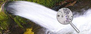 Rapporto Eea sulle sostanze chimiche nelle acque superficiali. Sostanze chimiche presenti nell'acqua che comportano rischi significativi per l'ambiente.